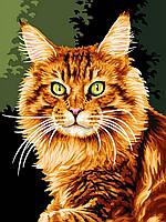 """Раскраска Антистресс для взрослых и детей """"Норвежская кошка"""", 30 х 40 см , С Коробкой"""