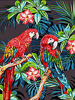 """Раскраска Антистресс для взрослых и детей """"Красочные попугаи"""", 30 х 40 см , С Коробкой"""