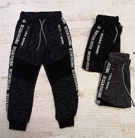 Спортивные брюки для мальчиков Seagull оптом, 4-12 лет., фото 1