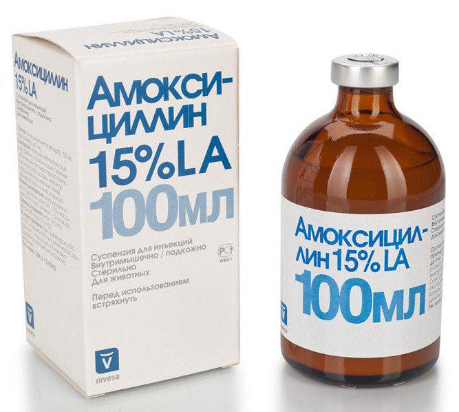 Амоксициллин 15% 100 мл.  INVESA
