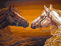 """Раскраска Антистресс для взрослых и детей """"Прекрасные лошади"""", 30 х 40 см , С Коробкой"""