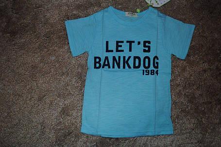 Футболка для мальчиков голубая Lets Bankdog 6054, фото 2
