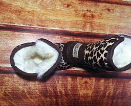 Угги детские леопардовые 9238, фото 3