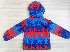 Ветровка для мальчиков сине-красная весна 4-6 лет, фото 2