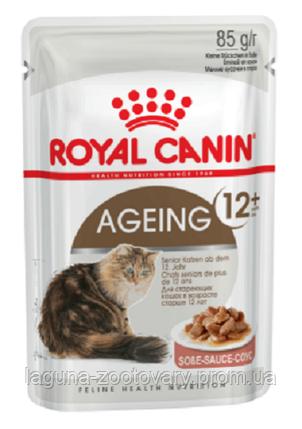 Влажный корм для кошек старше 12 лет, 85гр/ Роял Канин AGEING+12 WET, фото 2