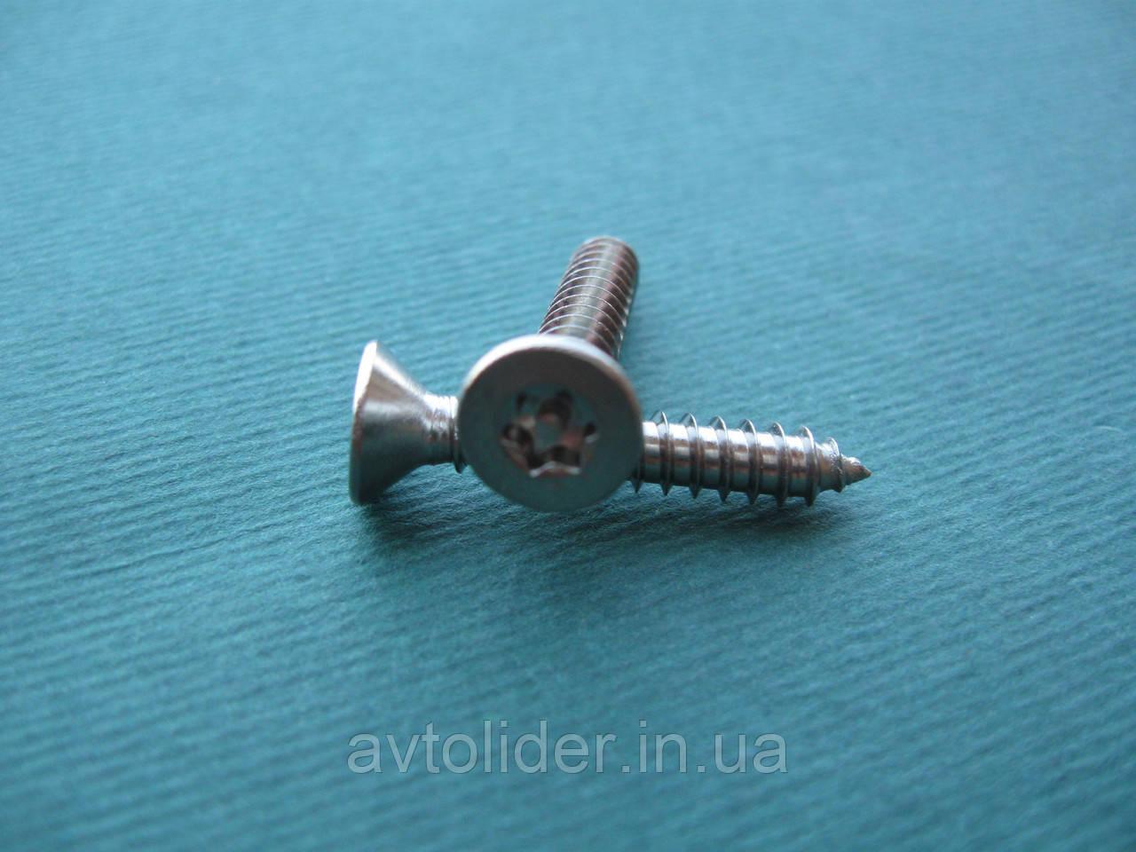 Нержавіючий антивандальний шуруп з потайною голівкою, TORX+PIN