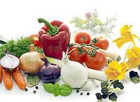Семена овощей и зелени оптом, в Украине.