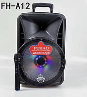 Акустическая калонка Fuhau FH-A12