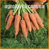 Насіння моркви Кардіф F1/ Cardiff F1 (1,8-2,0 мм) (1 млн. сем.), Bejo, Нідерланди