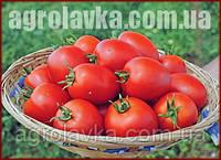 Насіння томату детермінантного, Наміб F1, (1000семян), Syngenta, Швейцарія