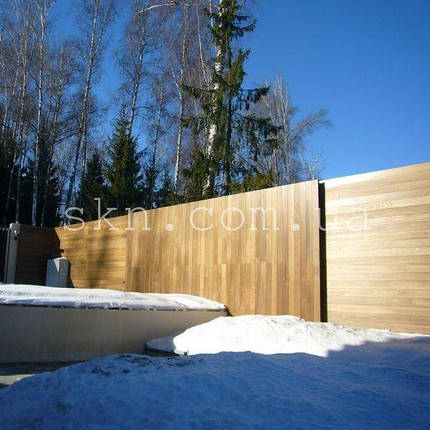 Забор из Термоясеня, фото 2