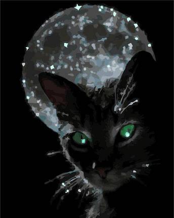 AS0277 Набор-раскраска по номерам Ночная жизнь, фото 2