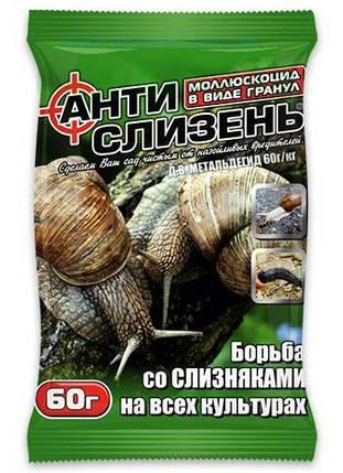 Моллюскоцид Антислизень 60 г — средство от слизней, улиток, фото 2