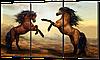 Картина из трех частей Лошади 100*58 см Код :W905