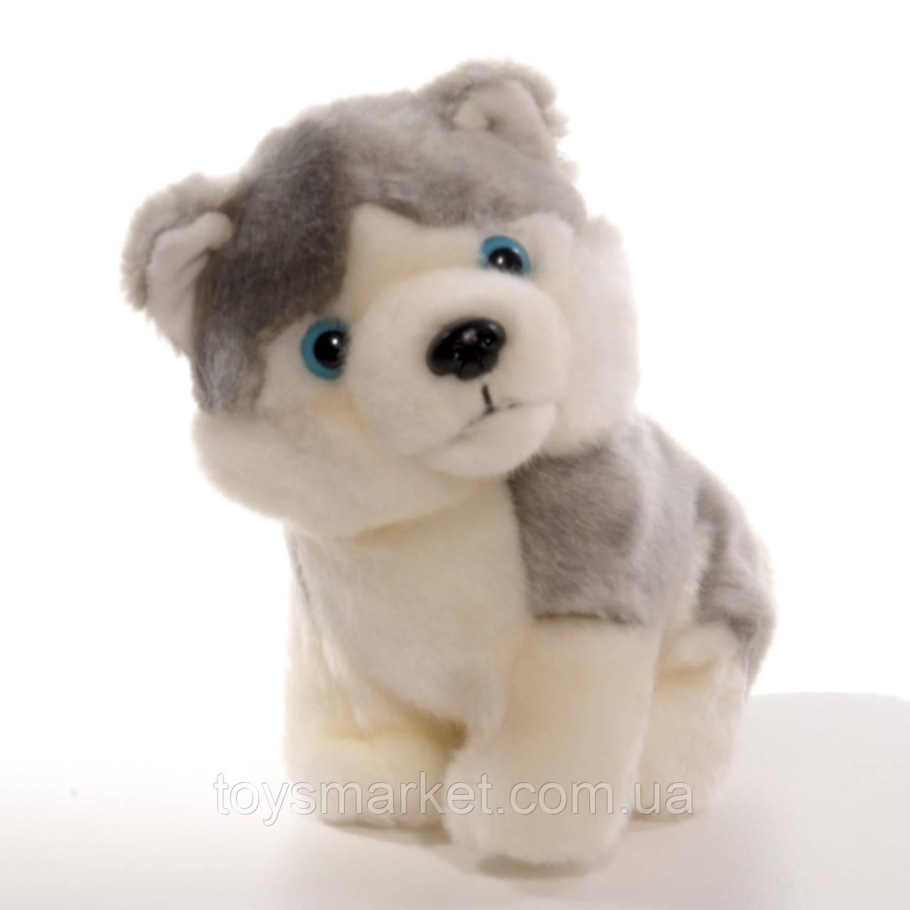 Детская мягкая игрушка песик Мирон