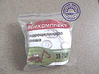 Ремонтный комплект гидроцилиндра ковша ЭО-2621.