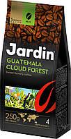 Кофе Jardin Guatemala Cloud Forest (зерно), 250 гр.