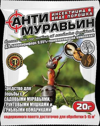 Инсектицид Антимуравьин, 20г — средство от муравьев, фото 2