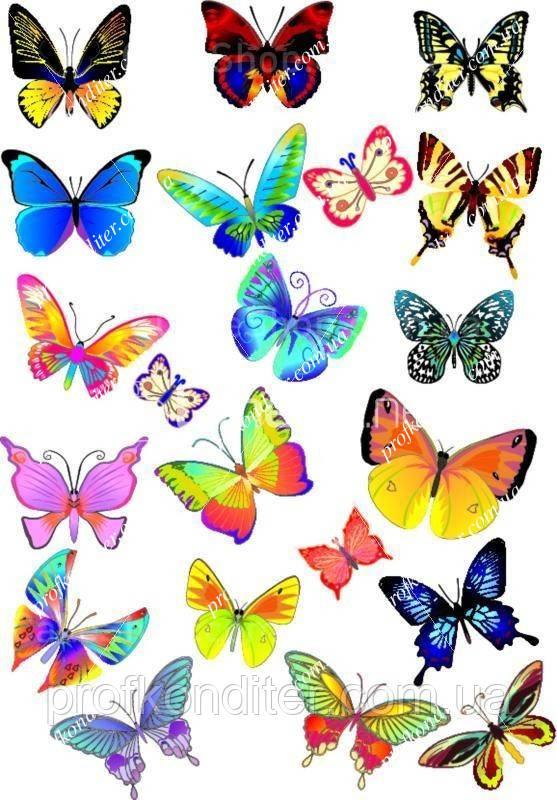 """Вафельна картинка """"Метелики"""" - 10"""
