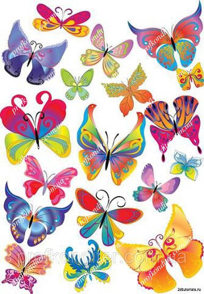 """Вафельна картинка """"Метелики"""" - 11"""