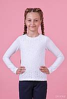 Блузка для дівчинки 26-8026-1