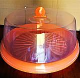 Тортовница с крышкой d- 310мм, пластик, цвета в ассортименте., фото 2