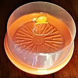 Тортовница с крышкой d- 310мм, пластик, цвета в ассортименте., фото 4