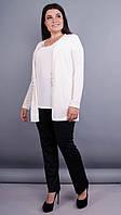 Дона. Жакет+блуза для женщин больших размеров. Молоко. 64