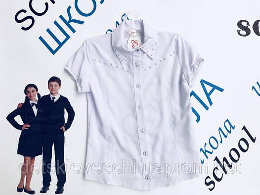 800869c6566 Нарядные блузки для девочки Ewax.Польша  продажа