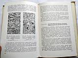 Л.Яблоновская Экспериментальные опухоли головного мозга, фото 5