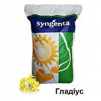 Гладіус насіння озимого ріпаку виробник Syngenta / Гладиус семена озимого рапса производитель Syngenta
