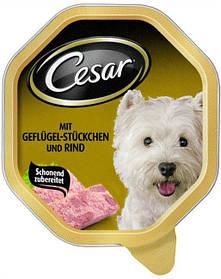 CESAR с сочной говядины и птицы 0.15 kg