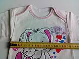 Ясельная кофта 3518 НАЧЕС рост 68,74, размер 48 ЗАЙКА молочный, фото 3
