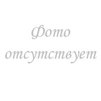 10003401 Шайба уплотнительная шнека для мясорубки, для MFW6..