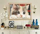 Алмазная вышивка, котик, полная выкладка 30х20 см, фото 3