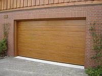 Ворота гаражні секційні Дорхан, RSD01SС-UA №3, 2500х2530, золотий дуб, фото 1