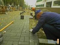 Укладка тротуарной плитки Киев и Киевской области