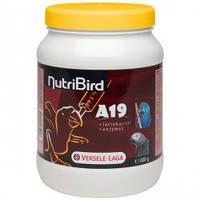 Versele-Laga NutriBird A19 for baby-birds ВЕРСЕЛЕ-ЛАГА НУТРИБЕРД МОЛОКО для птенцов крупных попугаев, 0.8кг