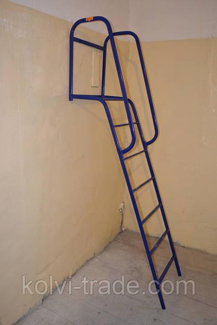 Универсальная лестница Kolvi, фото 1