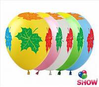 """Воздушные шарики клён цветной  шелкография 12"""" (30 см)  ТМ Show"""