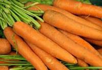 Семена моркови Болеро F1 100000 семян (VD)  Vilmorin