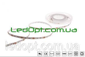 Светодиодная лента SMD 2835, 60шт/м, 5.4 Вт/м, IP33, 13000К холодный белый