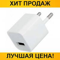 Сетевой адаптер Apple Бочонок 1 USB (2A)