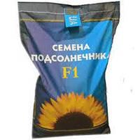 Семена подсолнечника НС-Х-6043 (Сербская селекция) Екстра