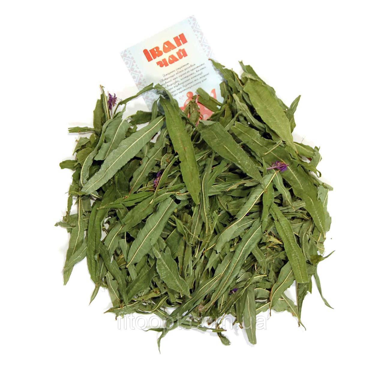 иван чай из сушеных листьев