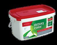 DETOXY COLOR - живая интерьрная краска
