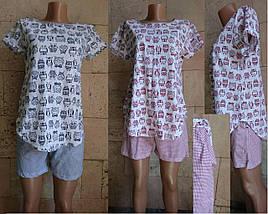 Хлопковая женская пижама с футболкой и шортами принт Совы 42-56 р, фото 2