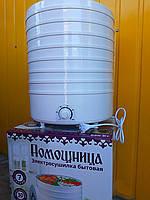 Электрическая сушилка для фруктов и овощей Помощница ( аналог Ветерок - 2 ) мощностью 650 Вт, фото 3