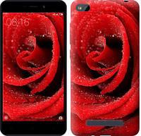 "Чехол на Xiaomi RedMi 4A Красная роза ""529c-631-5948"""