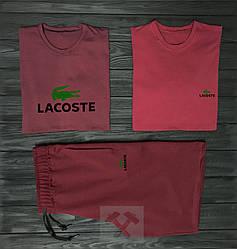 Мужской комплект две футболки + шорты Lacoste красного цвета (люкс копия)